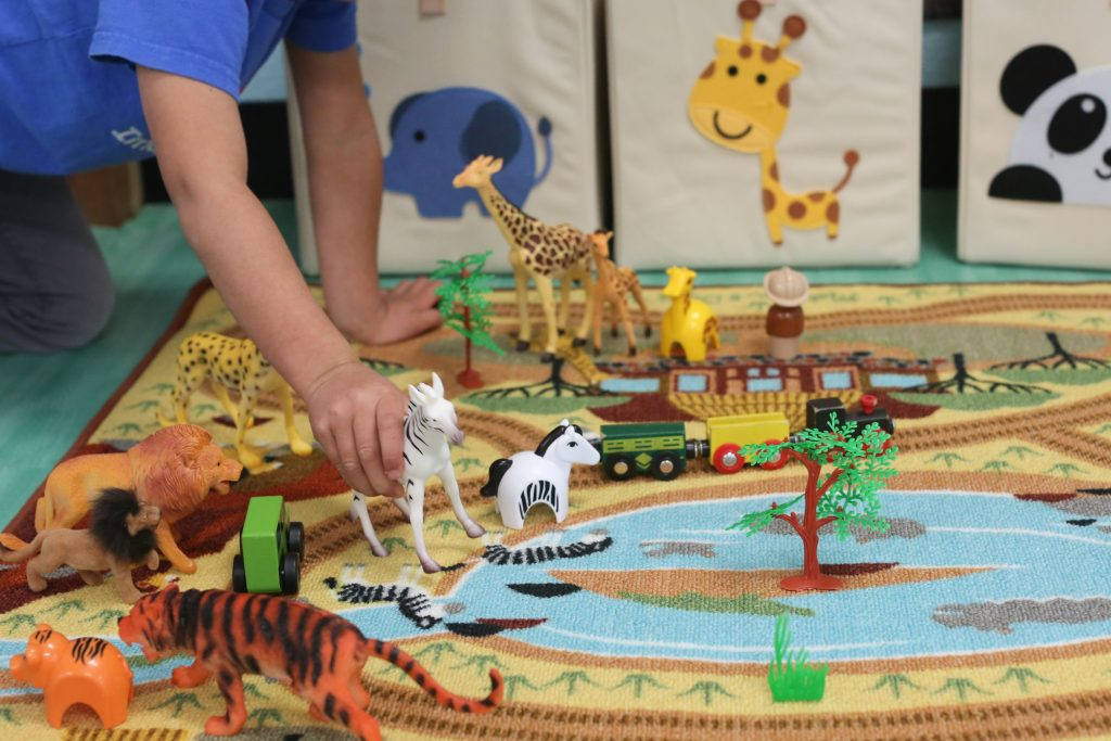 Safari Play Area